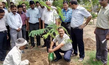 Plantation Programme @ AEC