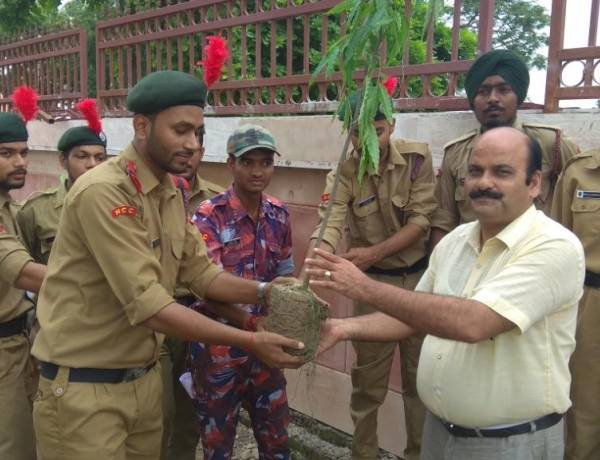 Tree Plantation Programme by NCC Cadets @ HCST